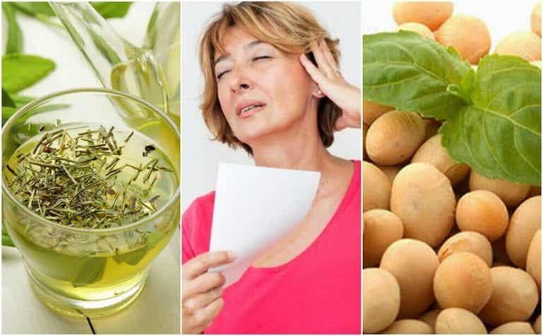 5 naturlige produkter til at håndtere overgangsalderen