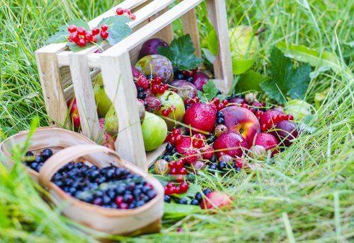 Bær er vitaminholdige, smager godt og er gode for produktionen af kollagen.