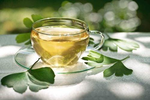 Ginkgo biloba er en fremragende te, der hjælper mod nedbrydning af makula.