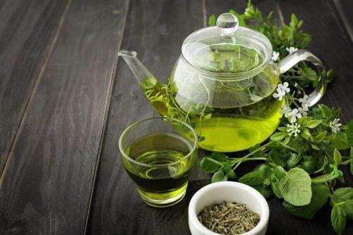 Grøn te hjælper din fordøjelse på vej og indeholder meget få, næsten ingen, kalorier.