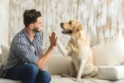Mand der sidder med sin hund