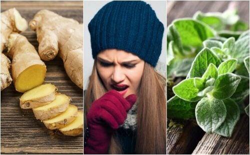 Slip af med slim: 5 slimløsende naturremedier