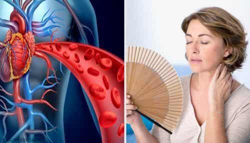 Hvordan påvirker overgangsalderen hjertesundhed