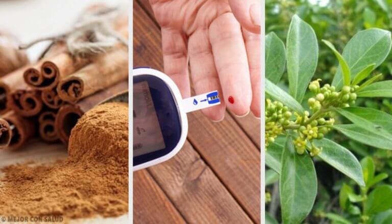 5 planter til et stabilt blodsukker