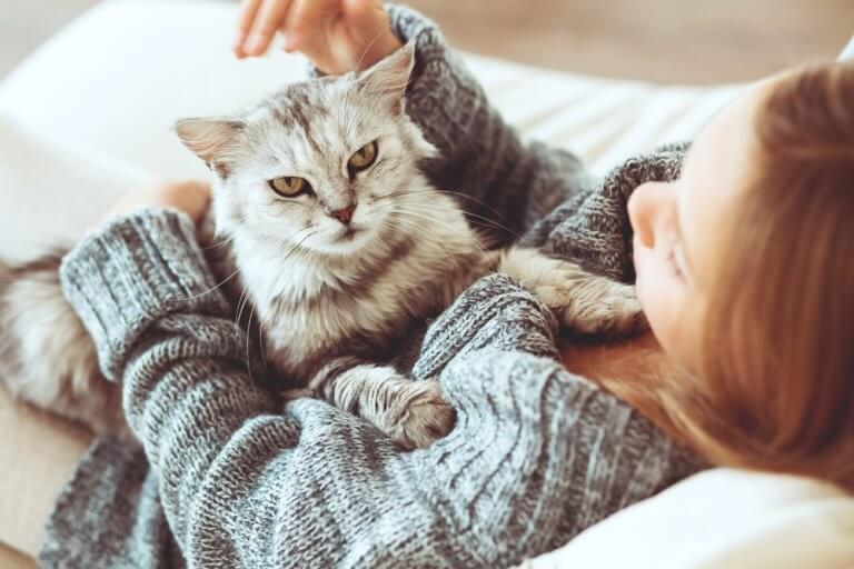 Kvinde der sidder med sin kat - hvilket kaeledyr passer bedst til dig