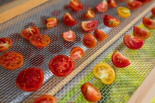 Tomater tørres