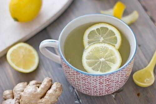 Ingefaer og citron shot