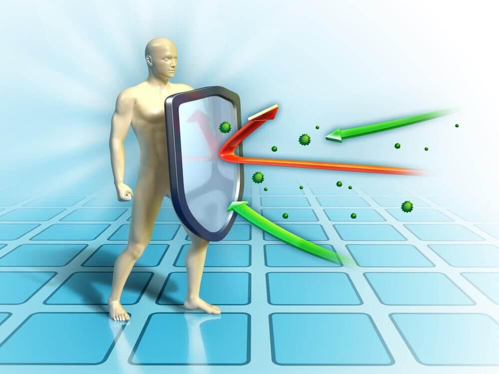 Ti råd til at styrke dit immunforsvar gennem kosten