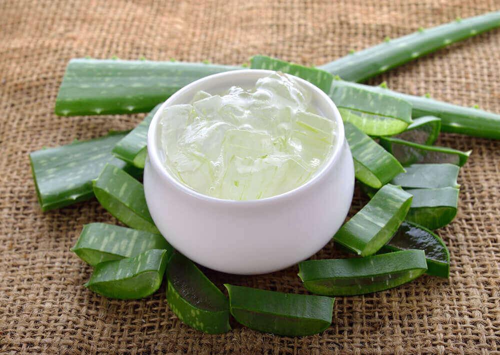 Aloe vera gele fra friske blade
