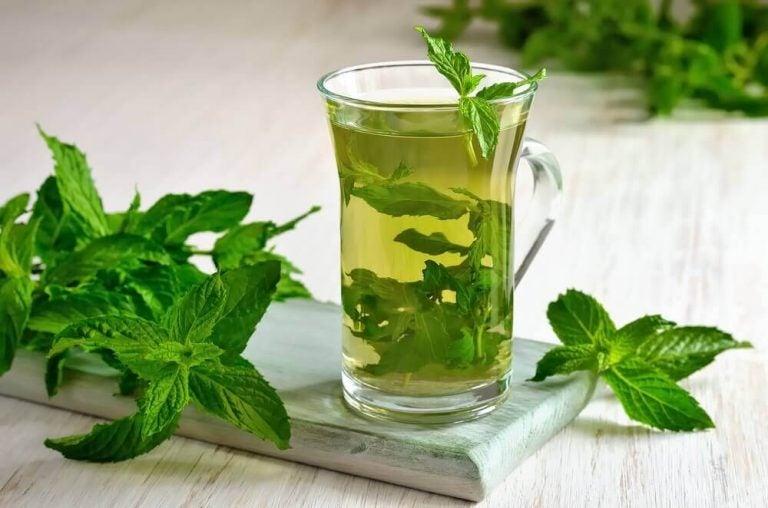 4 måder at drikke grøn te for vægttabet