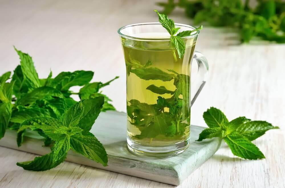 grøn te vægttab