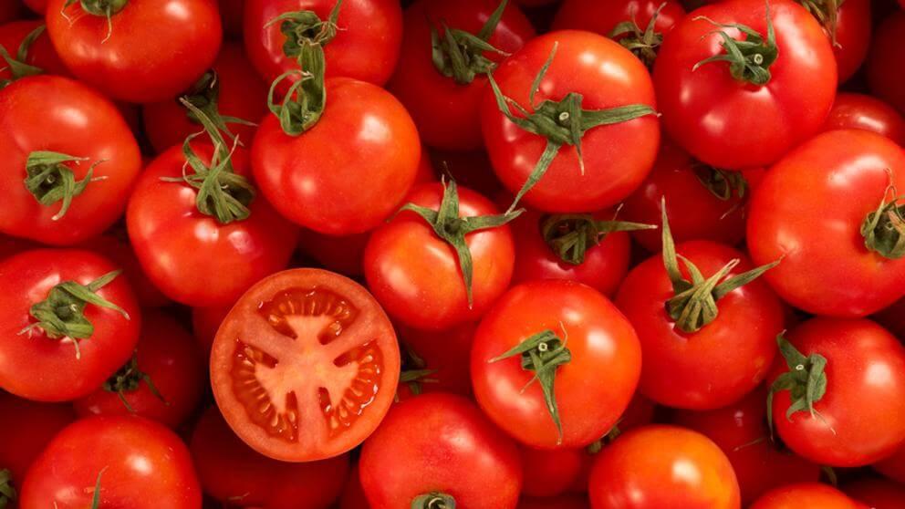 Røde tomater