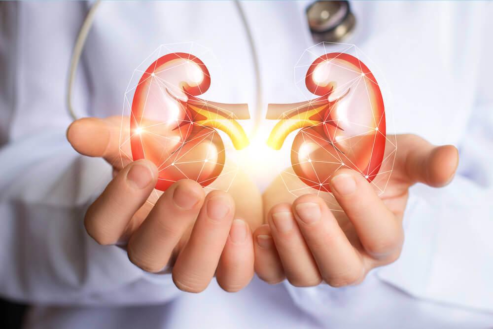 Utrolig detox til dine nyrer