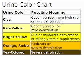 Oversigt over urins farve