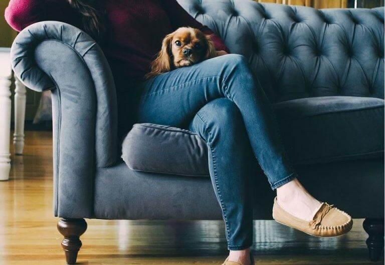 Kvinde og hund i sofa