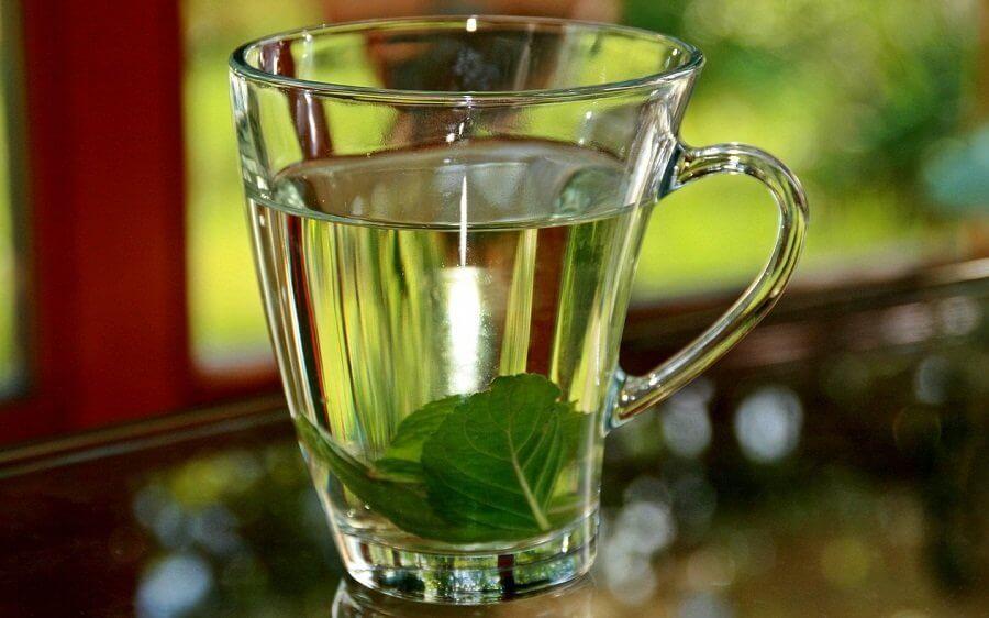 få ro på angsten med basilikum-te