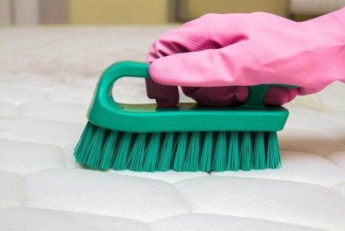 Fjern dårlige lugte fra din madras med disse tips