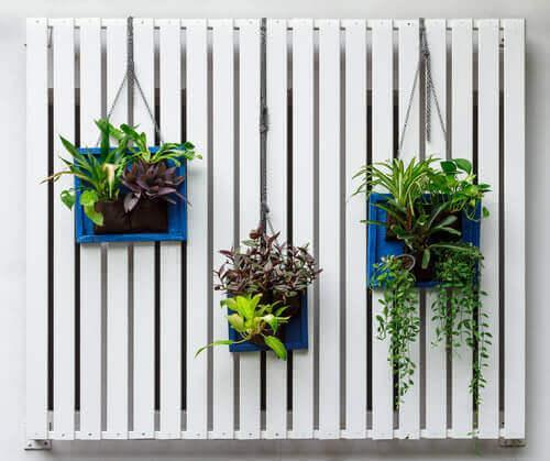 En lodret have skaber liv i dit hjem