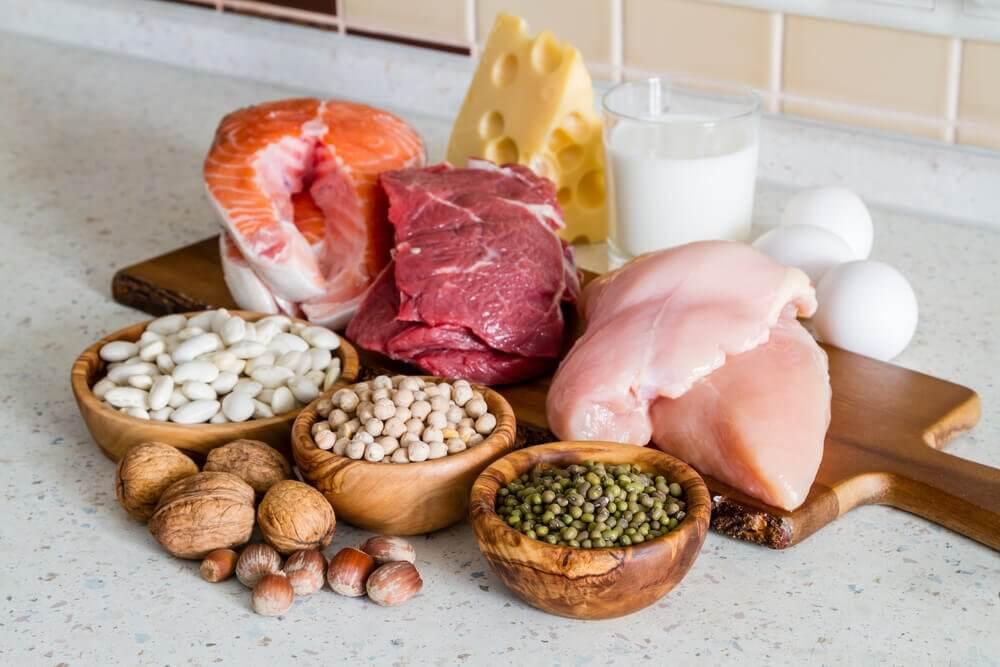 Et udvalg af proteinrige fødevarer