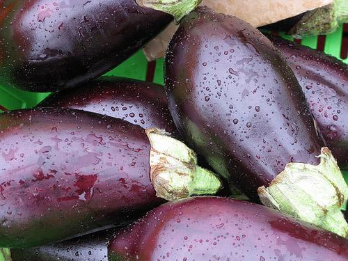 Opskrift på panerede auberginer
