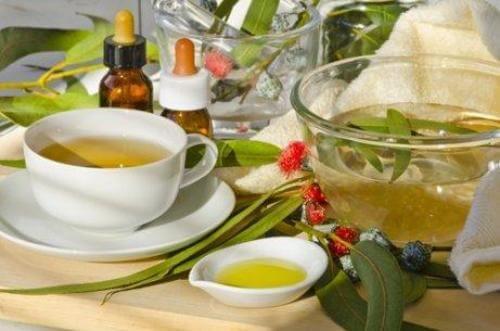 Naturmidler med Eukalyptus til at lindre åndedrætsproblemer