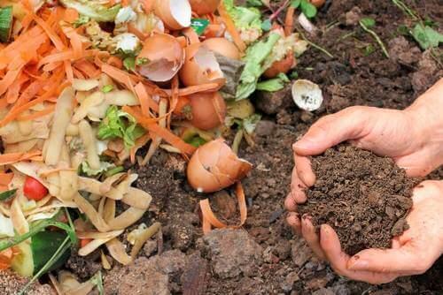 Fem måder at lave naturlig kompost til dine planter på