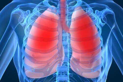 10 tegn der indikerer dine lunger ikke har det godt