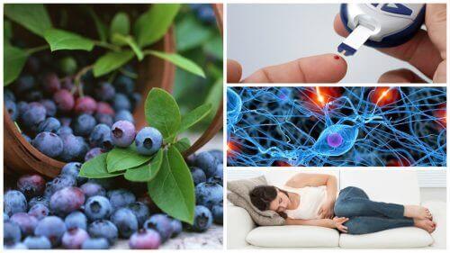 8 fantastiske fordele ved blåbær