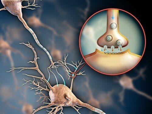 Du kan bruge forskellige tricks til at styrke dit nervesystem