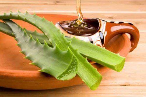 Aloe vera og honning er gode midler til tarmrensning