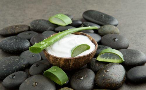 Aloe vera og kokos er godt for dit hår