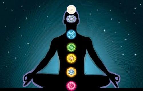 Der findes 7 forskellige chakraer i kroppen