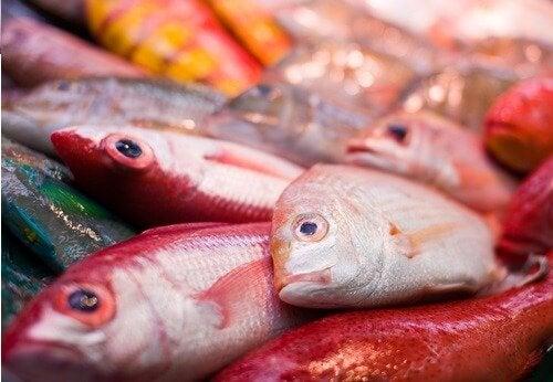 fisk med kviksølv