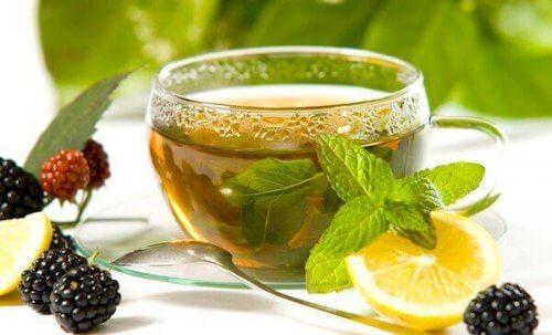 Drikke grøn te me citron