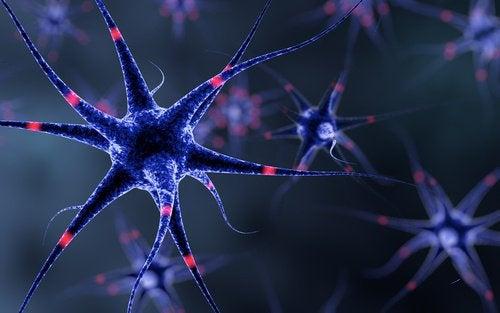 6 tricks til at styrke nervesystemet