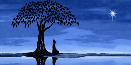 Vipassana meditation giver dig indsigt