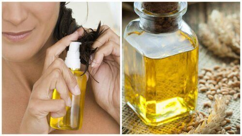 6 måder hvedekimolie hjælper dit hår