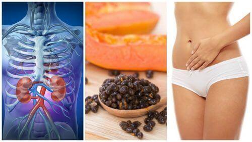 Fordele ved papayafrø: Det kan de gøre for dig