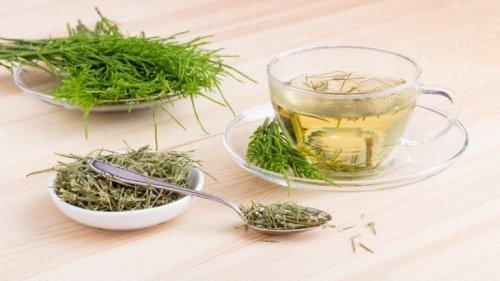 Du kan bruge planter til bekæmpelse af inkontinens