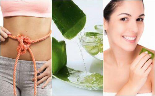 Aloe vera gel gavner kroppen: 9 utrolige egenskaber