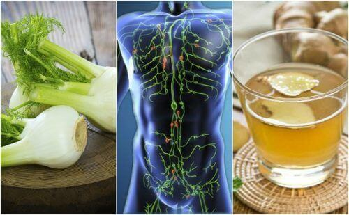 6 naturlige midler, der kan rense dit lymfesystem