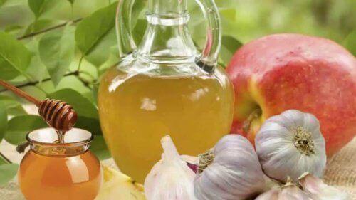 Mulige fordele ved hvidløg og honning