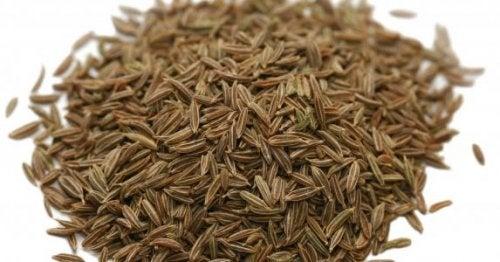 Spidskommen er et krydderi, der sætter gang i stofskiftet og tilfører en unik aroma og smag til dine retter