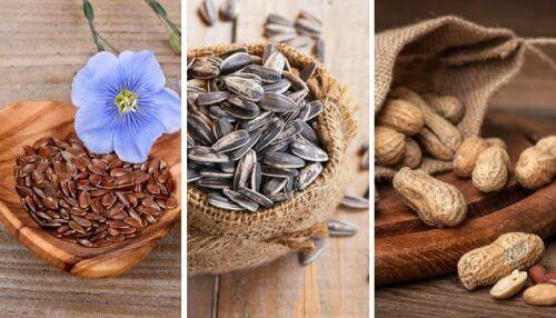 5 spiselige frø og kerner: Derfor er de så sunde