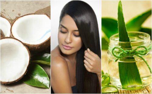 5 cremer til at glatte dit hår naturligt uden at skade det