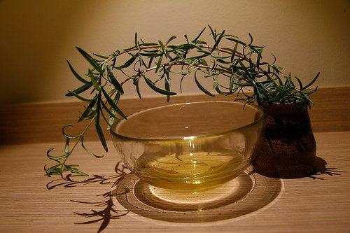 Blandt de mange essentielle olier finder vi også tea-tree