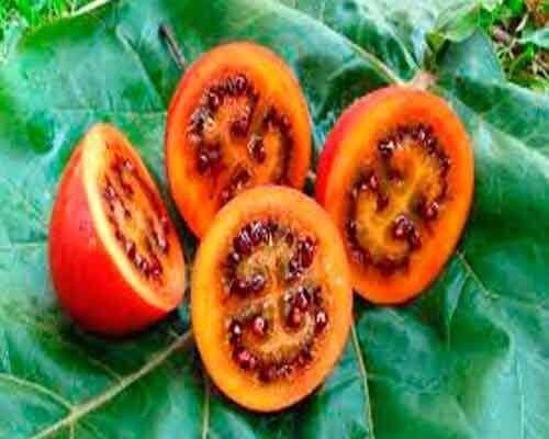 4 eksotiske frugter og grøntsager du aldrig har hørt om