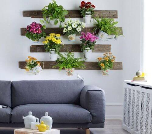 planter-ren-luft-dekoration