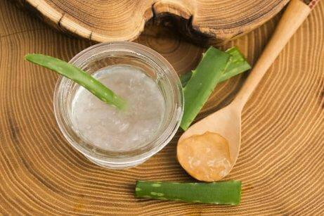 Aloe vera: en af de fem naturlige remedier til at behandle psoriasis topisk