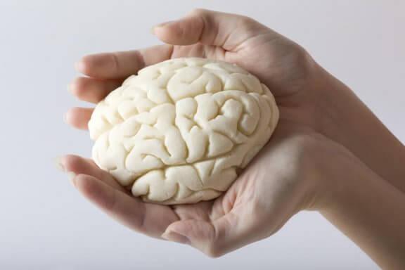 Hjerne i hånd